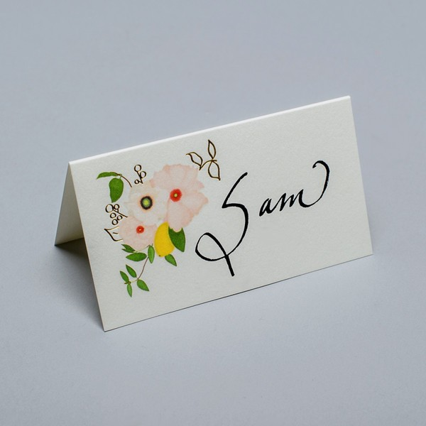 Karen Adams Eloise Place Cards